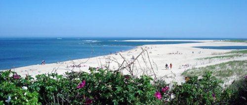 390325968_chatham_light_beach-William-DeSousa-Mauk