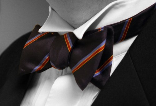 Bow-tie-colour-isolated