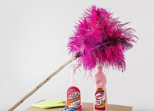 feather-duster-709124_960_720
